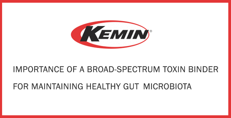 IMPORTANCE OF A BROAD-SPECTRUM TOXIN BINDER FOR MAINTAINING